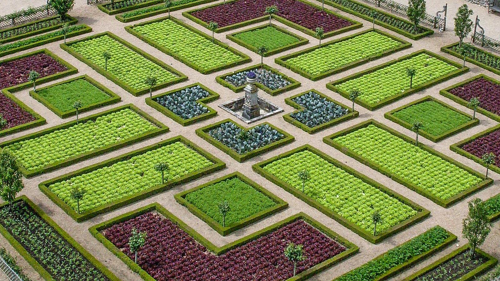 Château de Villandry: So schön kann Kohl sein! Foto: Hilke Maunder