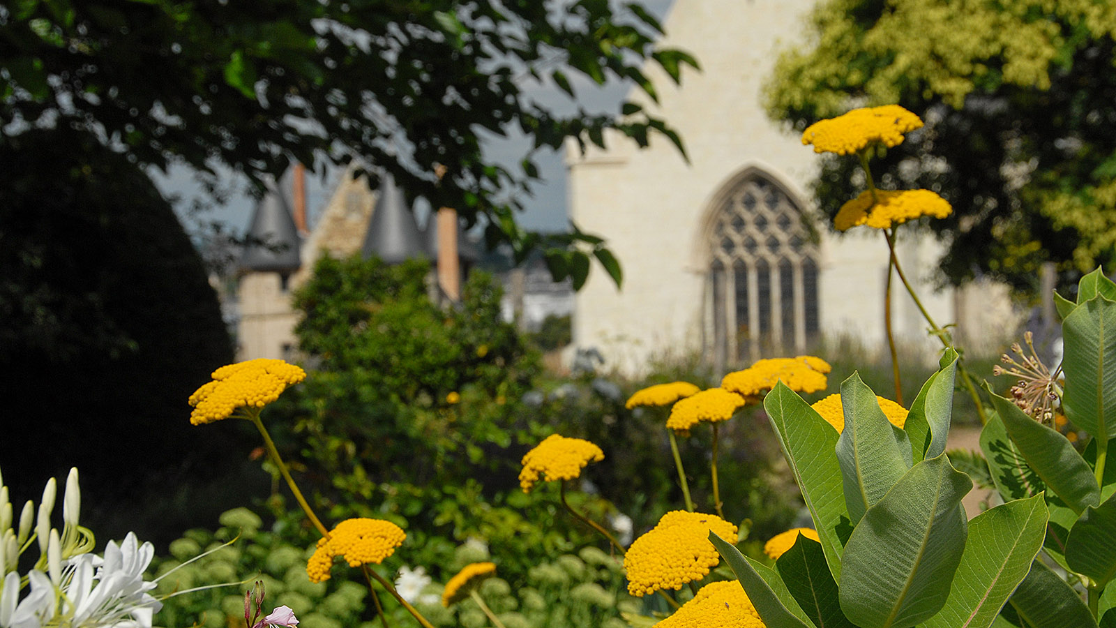 Im Sommer bezaubert der Schlossgarten mit seiner Blütenpracht. Foto: Hilke Maunder