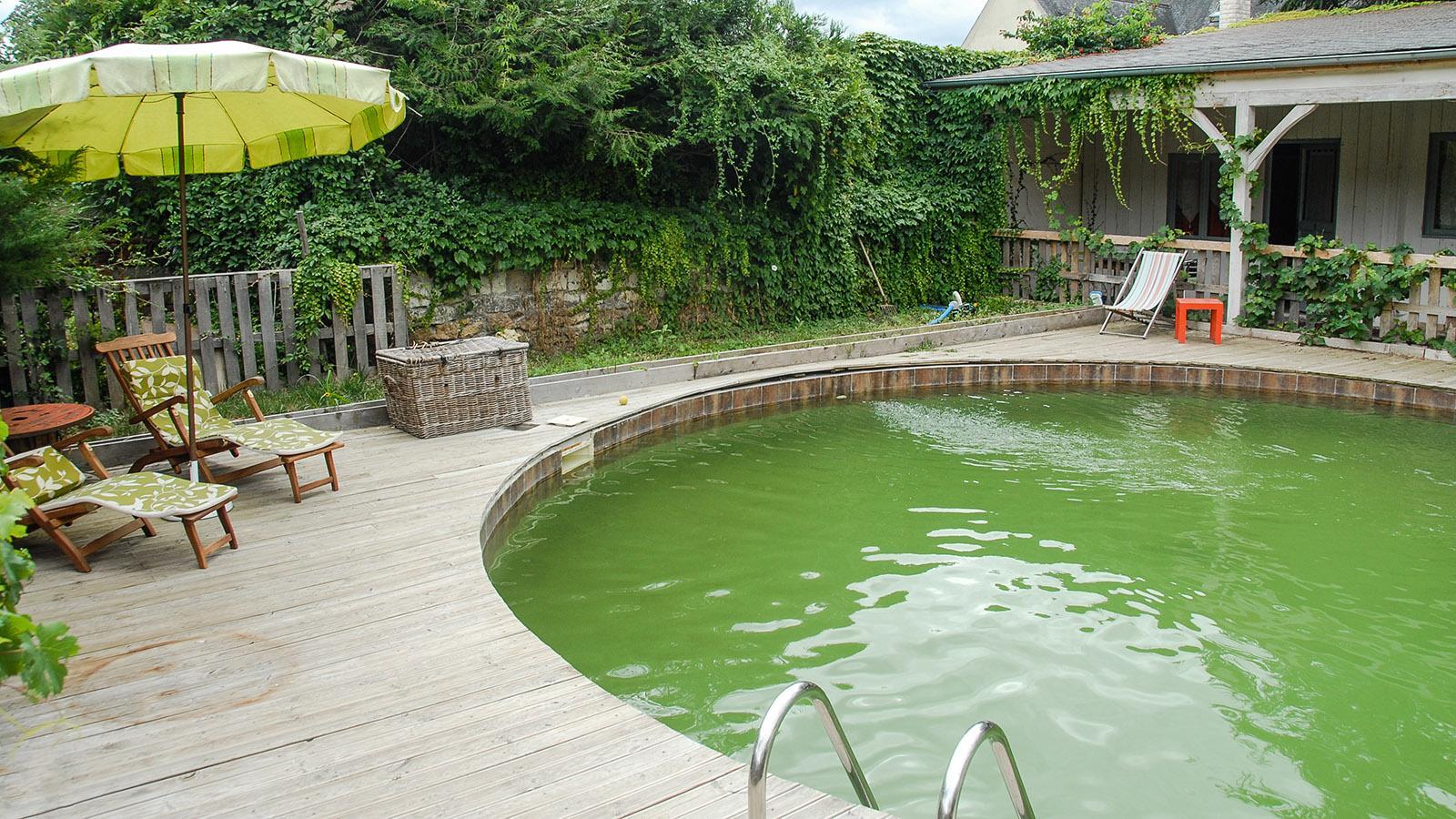 Bourgueil: Der Gäste-Pool des Café de la Promenade. Foto: Hilke Maunder