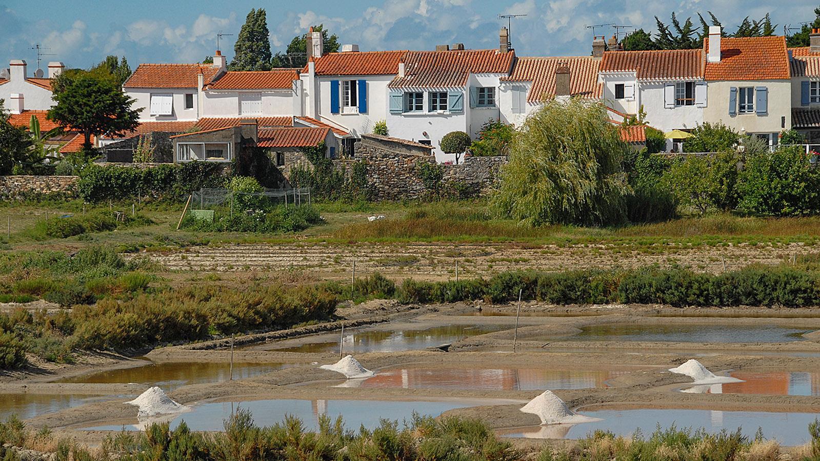 Noirmoutier-en-l'Île: Blick von der Jetée Jacobsen auf die Salzgärten. Foto: Hilke Maunder