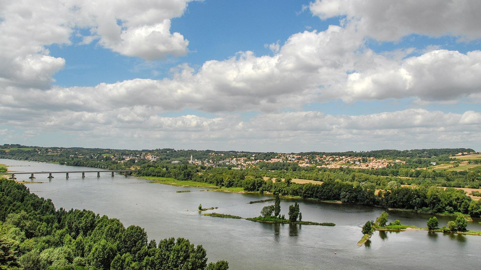 Loire-Panorama bei Champtoceaux. Foto: Hilke Maunder