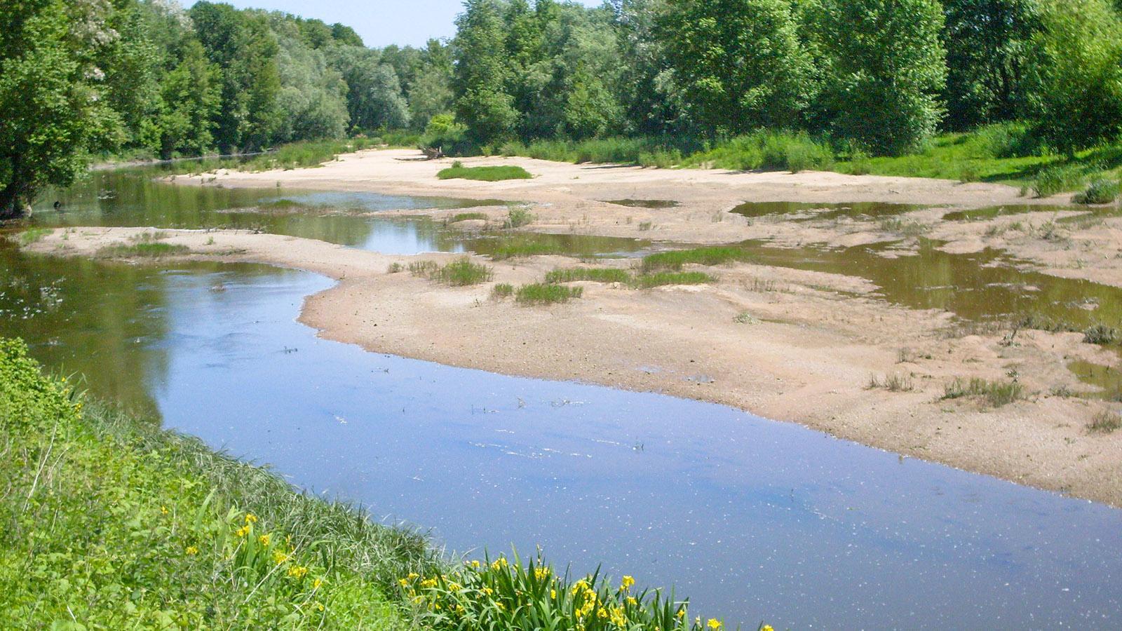 Idyllisch und naturnah - eine Seitenarm der Loire be Luynes. Foto: Hilke Maunder