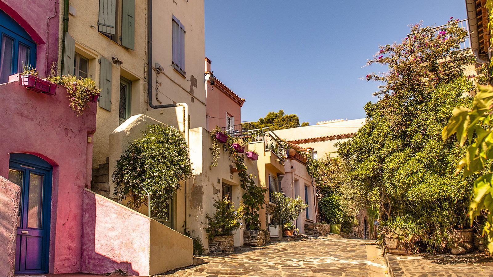 Das Altstadtviertel Le Mouré von Collioure. Foto: Hilke Maunder