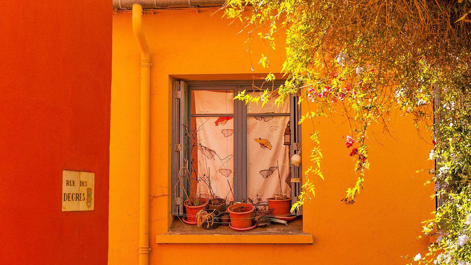 In der Altstadt von Collioure. Foto: Hilke Maunder