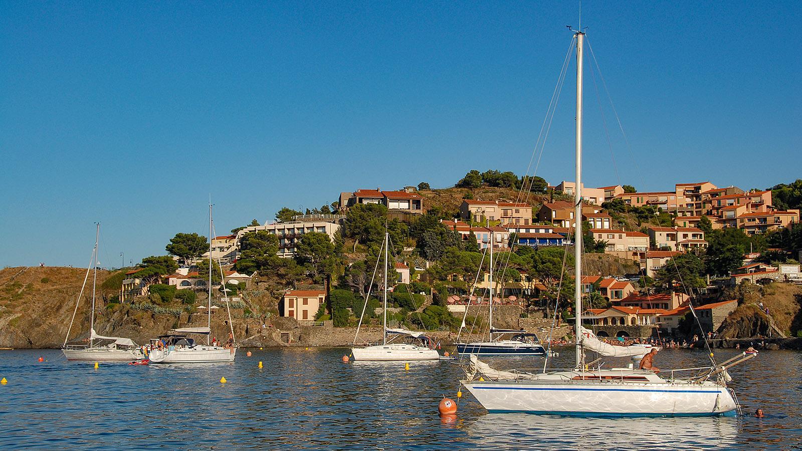 Die südliche Hafenbucht von Collioure. Foto: Hilke Maunder