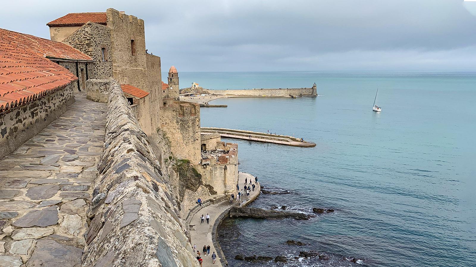 Das südliche Hafenbecken von Collioure. Foto: Hilke Maunder