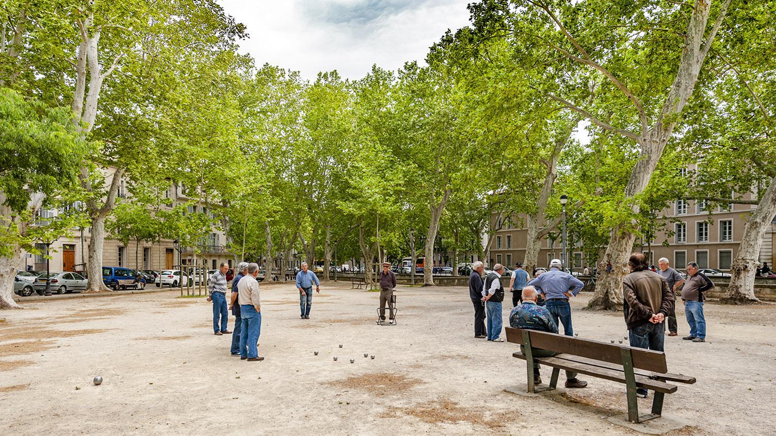 Pétanquespieler bei den Jardins de la Fontaine in Nîmes. Foto: Hilke Maunder
