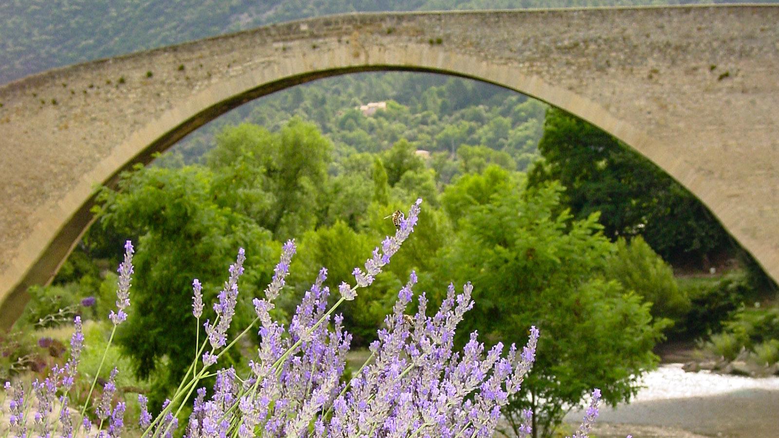 Nyons: Vor der Bogenbrücke über den Eygues blüht Lavendel am Ufer. Foto: Hilke Maunder