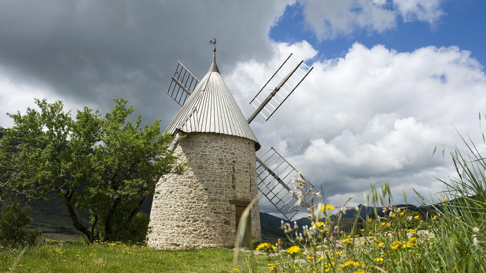 Maitres de mon moulin: Die berühmte Mühle von Cucugnan. Foto: Hilke Maunder