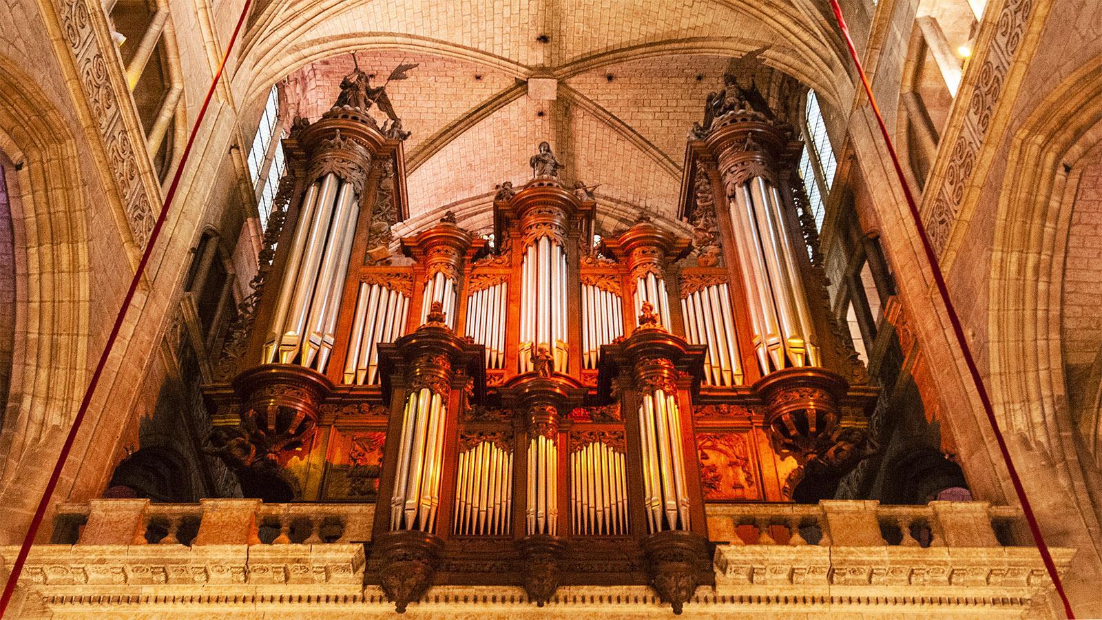 Auch: die Orgel der Kathedrale. Foto: Hilke Maunder