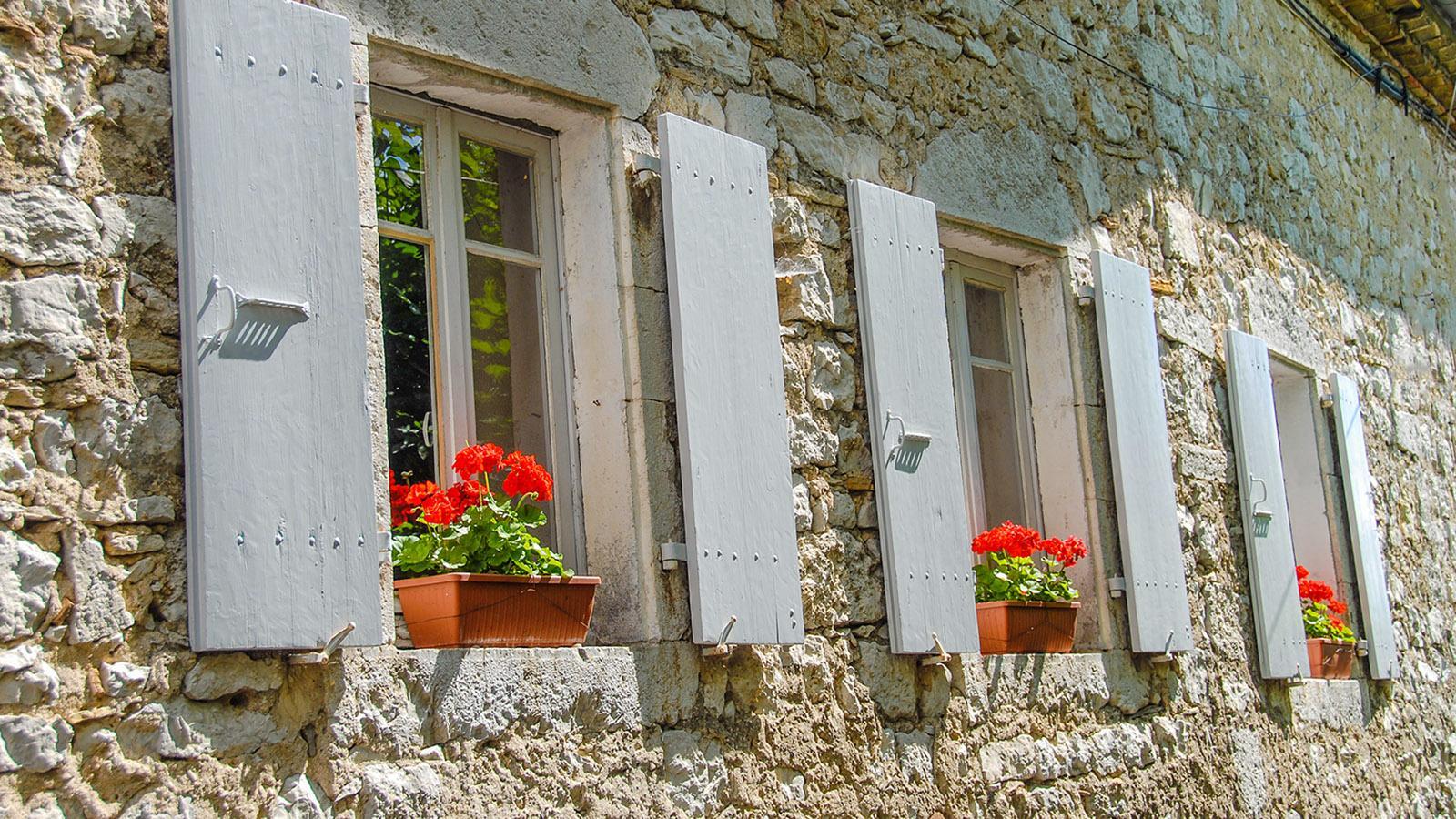 Balazuc ist auch ein Blumendorf! Überall grünt und blüht es! Foto: Hilke Maunder