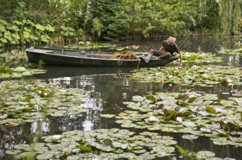 Giverny_Claude Monet_Garten_Seerosenteich_©Hilke Maunder