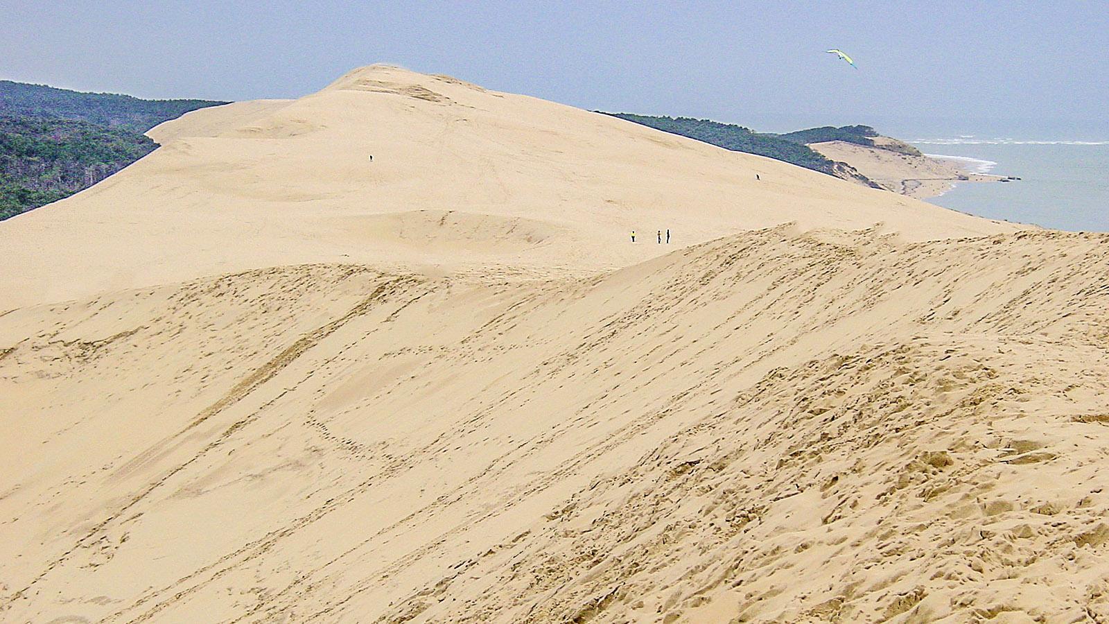 Die Dune de Pilat ist mit fast 107 Metern die höchste Düne Europas. Foto: Hilke Maunder