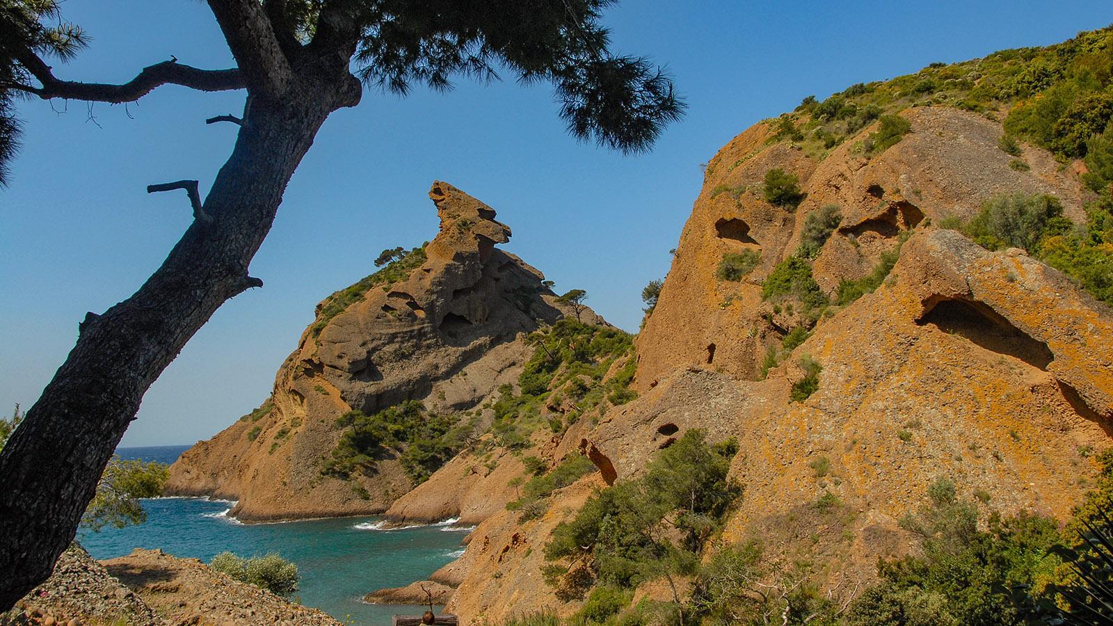 Der Endpunkt der Calanquesküste von Cassis: die Calanque de Figuérolles bei La Ciotat. Foto: Hilke Maunder