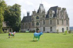 Normandie_Seine_Château_d'Étélan_Kühe_3©Hilke Maunder