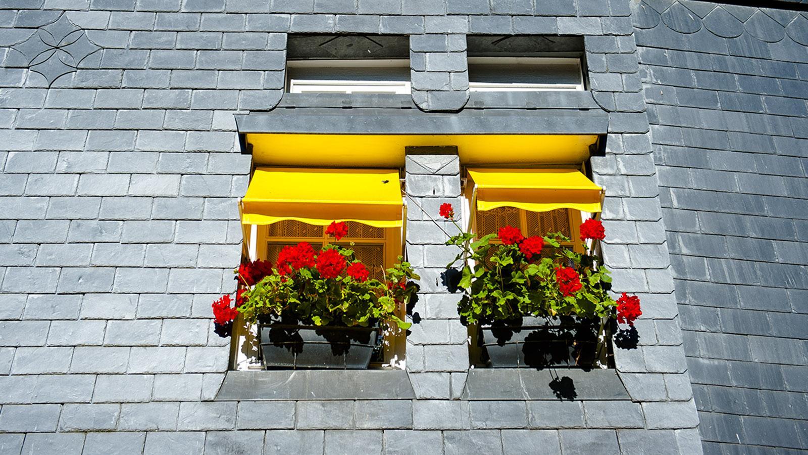 Boudin in Honfleur. Schieferverkleidetes Hafenhaus. Foto: Hilke Maunder