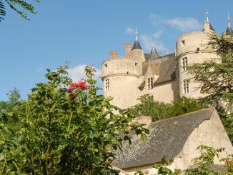 Montreuil-Bellay: das Burgschloss. Foto: Hilke Maunder
