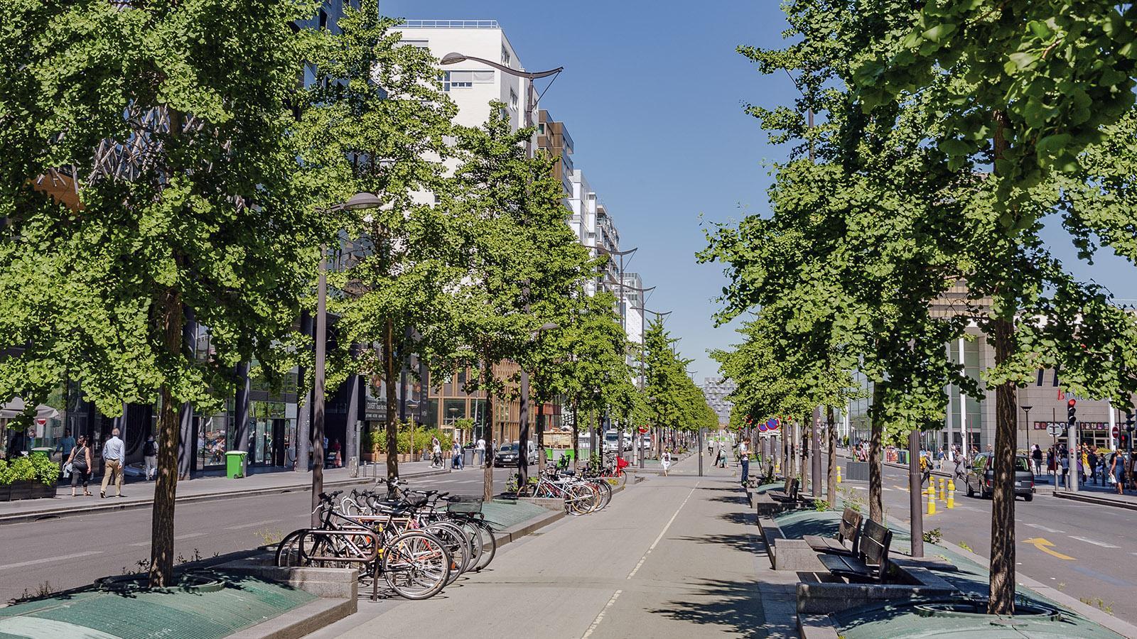 Municipales 2020: Neue Radschnellwege für Paris - auch am östlichen Rive Gauche von Tolbiac. Foto: Hilke Maunder