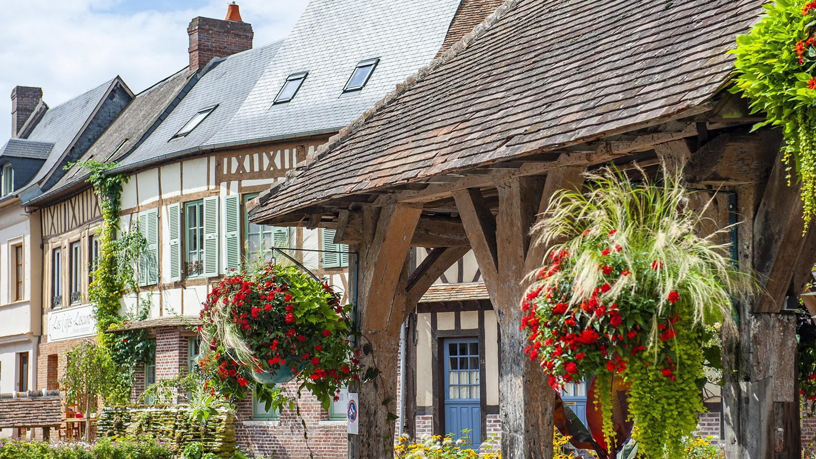 Lyons-la-Forêt: die Markthalle. Foto: Hilke Maunder