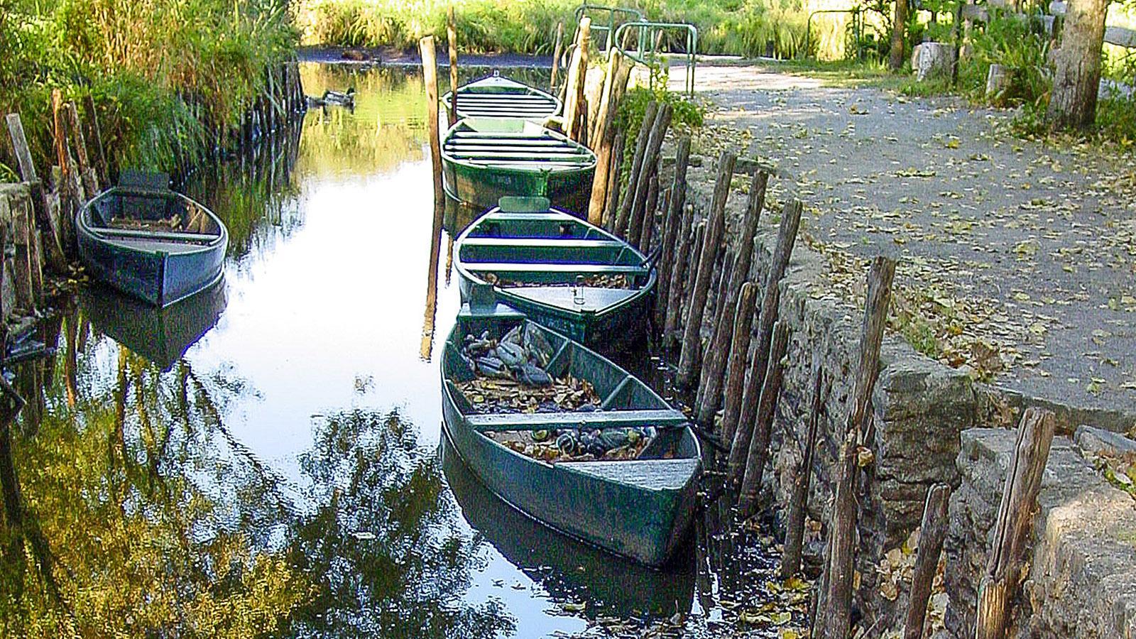 Grande Brière. Ile de Fédrun: Bootsanlegestelle für die Kähne der Bewohner, mit denen auch Besucher durch das Sumpfgebiet geführt werden. Foto: Hilke Maunder