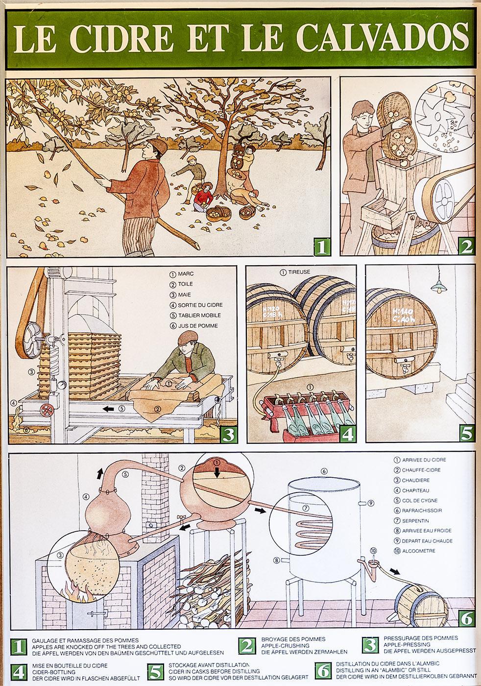 Die einzelnen Phasen der Cidre-Herstellung. Foto: Hilke Maunder