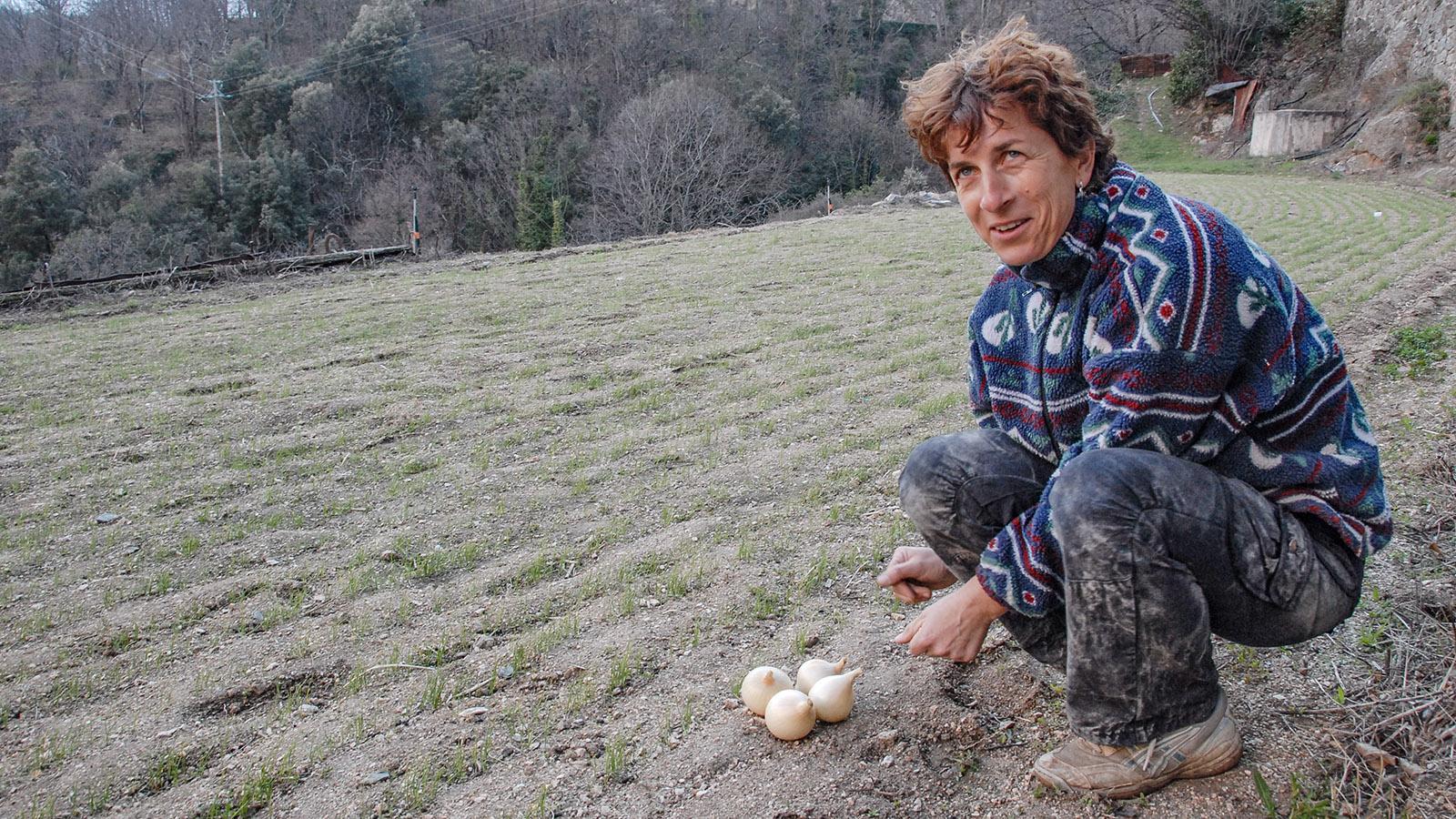 Bis heute Handarbeit: die Zucht der Oignon Doux. Foto: Hilke Maunder