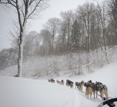 Pyrenäen_Bareges_Plateau de Lienz_Hundeschlitten_4©Hilke Maunder