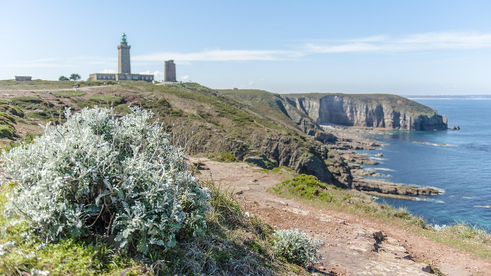 Ein Kap, zwei Leuchtturme: Cap Fréhel. Foto: Hilke Maunder