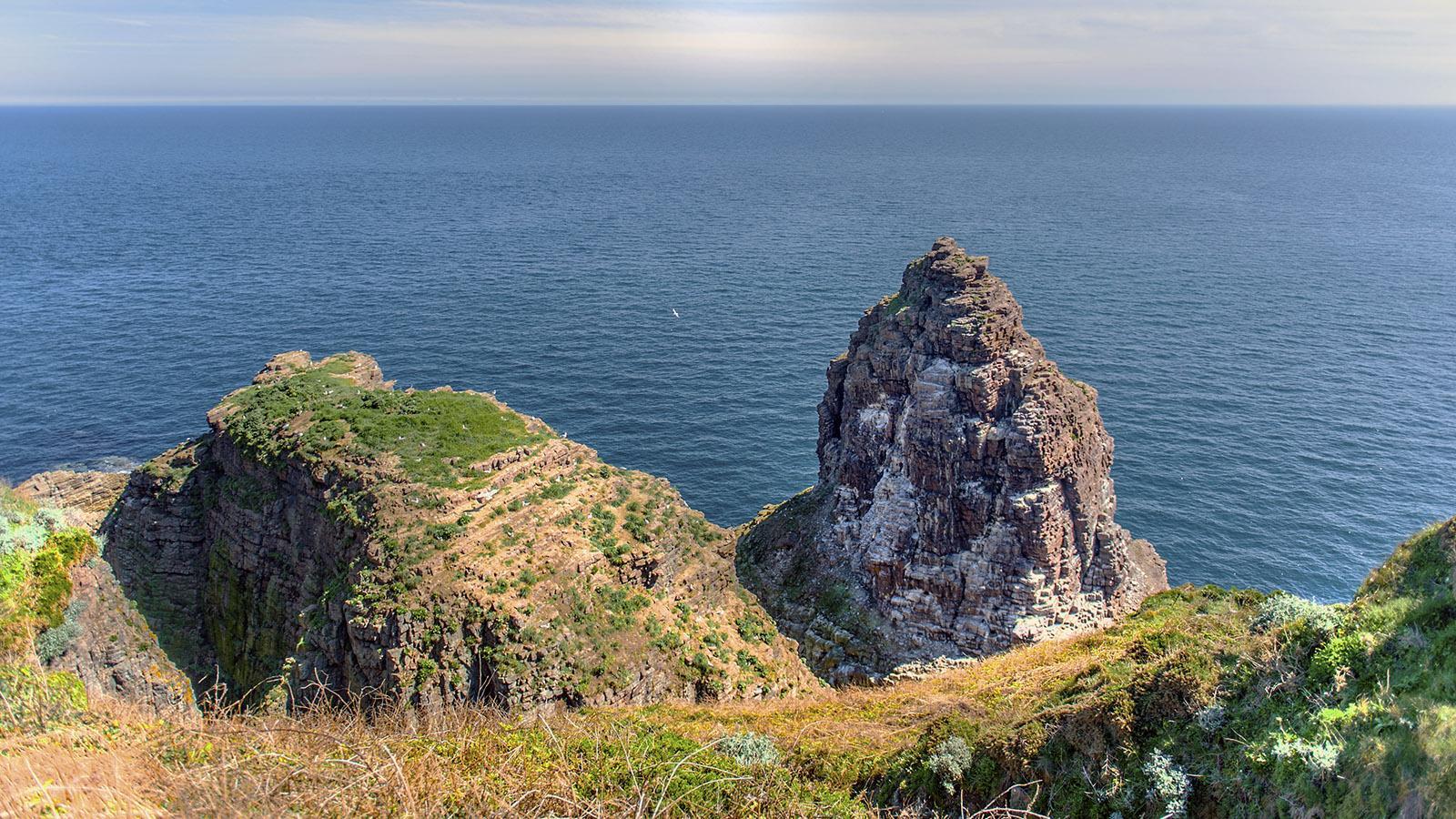 Die GR 34 folgt der Küste der Bretagne auch am Cap Fréhel. Foto: Hilke Maunder