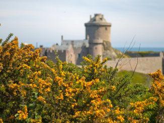 Das Fort La Latte am Cap Fréhel. Foto: Hilke Maunder