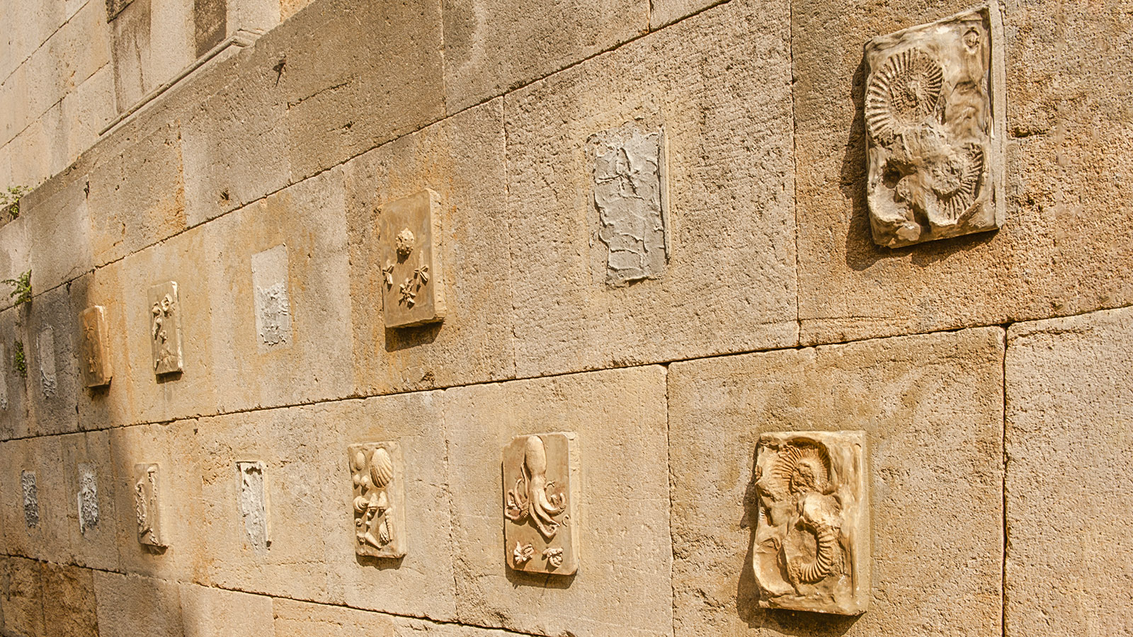 Bei Diderot in Langres: Stadtmauer. Foto: Hilke Maunder