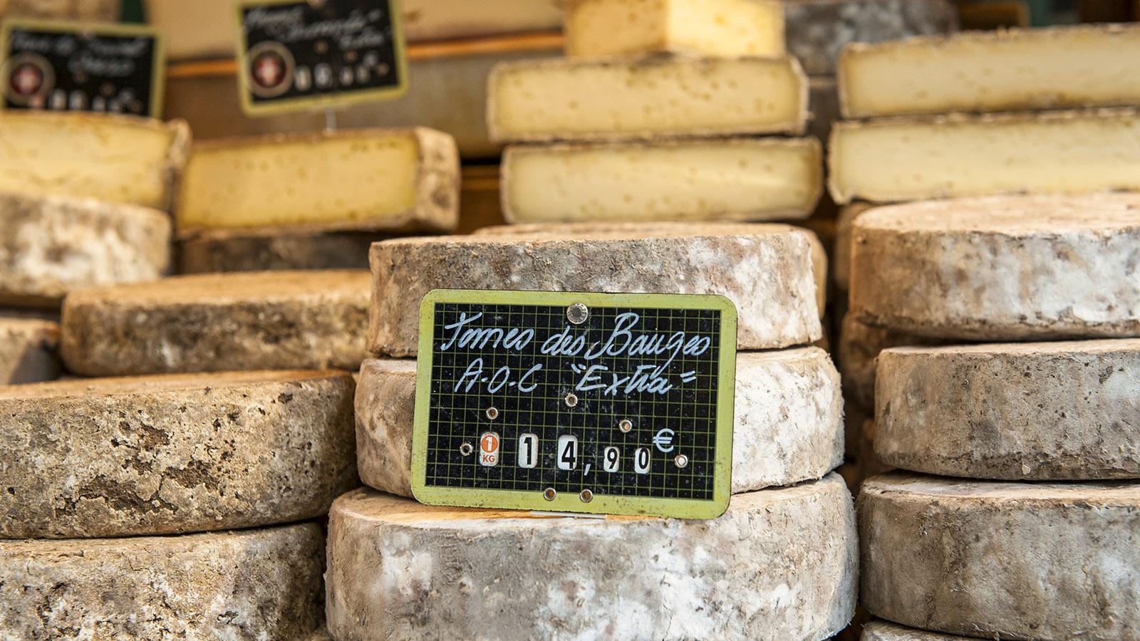 Tome de Bauges, frz. Bergkäse auf dem Markt von Annecy. Foto: Hilke Maunder