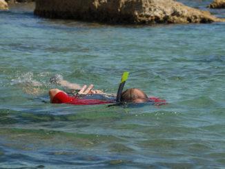 Schnorchelnd eröffnen sich die Geheimnisse der Unterwasserwelt. Foto: Hilke Maunder