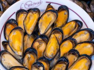 Die Fischmarkthalle von Trouville: Miesmuscheln – es darf gekostet werden! Foto: Hilke Maunder