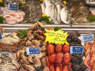 Die Fischmarkthalle von Trouville: