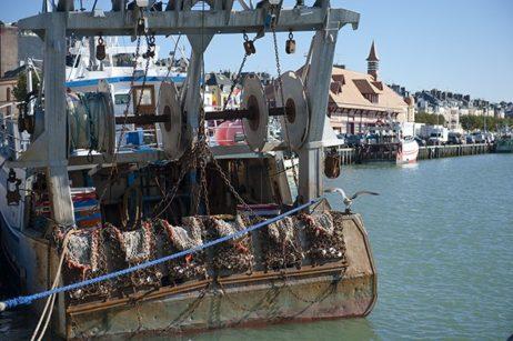 Normandie_Trouville-Fischmarkt_Fruit de Mer_Seafood_Fischkutter_©HIlke Maunder