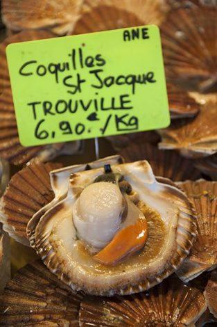 Normandie_Trouville-Fischmarkt_Fruit de Mer_Seafood_Markt_Jakobsmuscheln_2©Hilke Maunder
