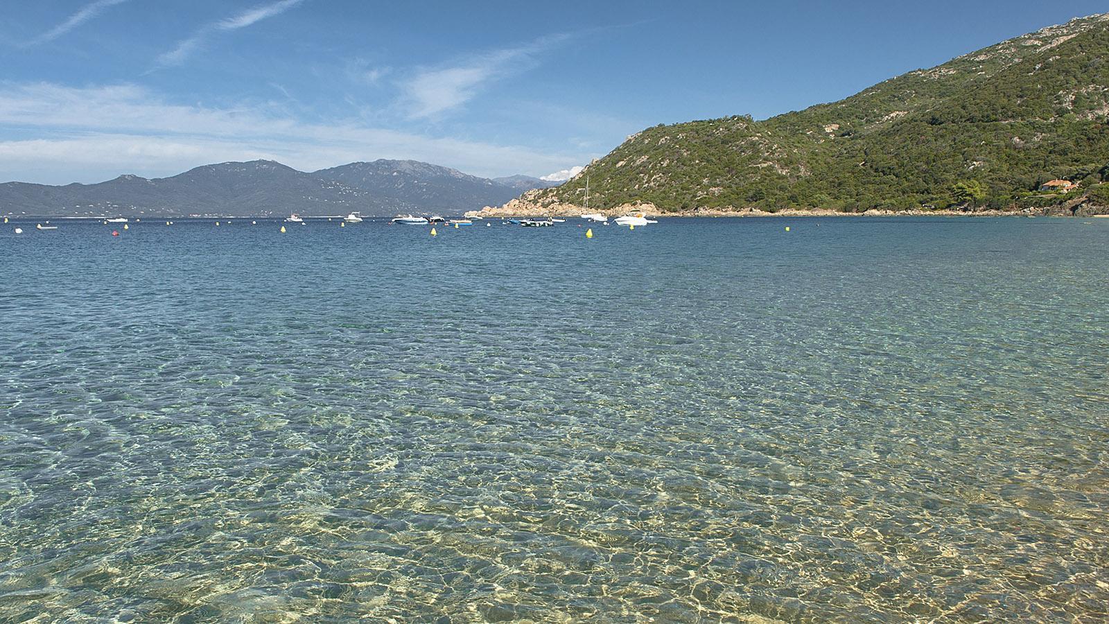 Campomoro: Das Wasser der Badebucht ist glasklar. Foto: Hilke Maunder