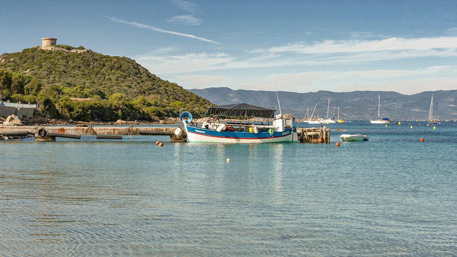 Campomoro: die Fischerboote. Foto: Hilke Maunder
