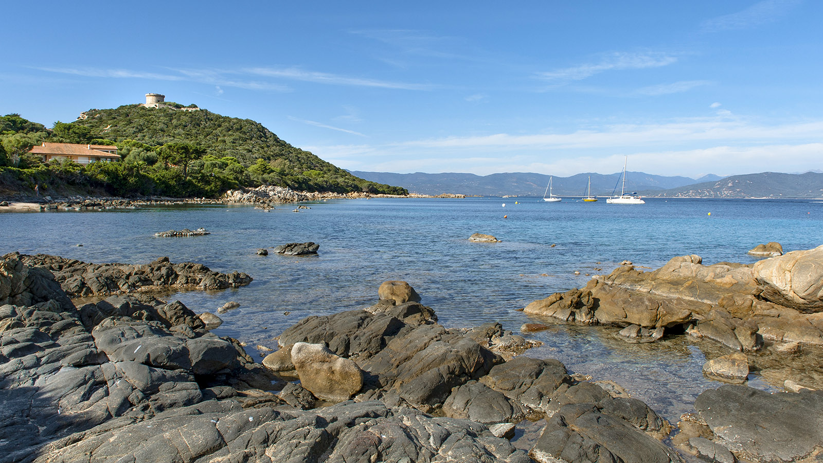 Campomoro: die Bucht mit ihrem berühmten Genueserturm. Foto: Hilke Maunder