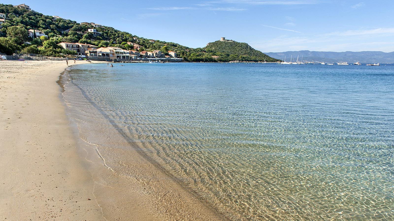 Die Bucht von Campomoro mit Genueserturm und Badestrand. Foto: Hilke Maunder