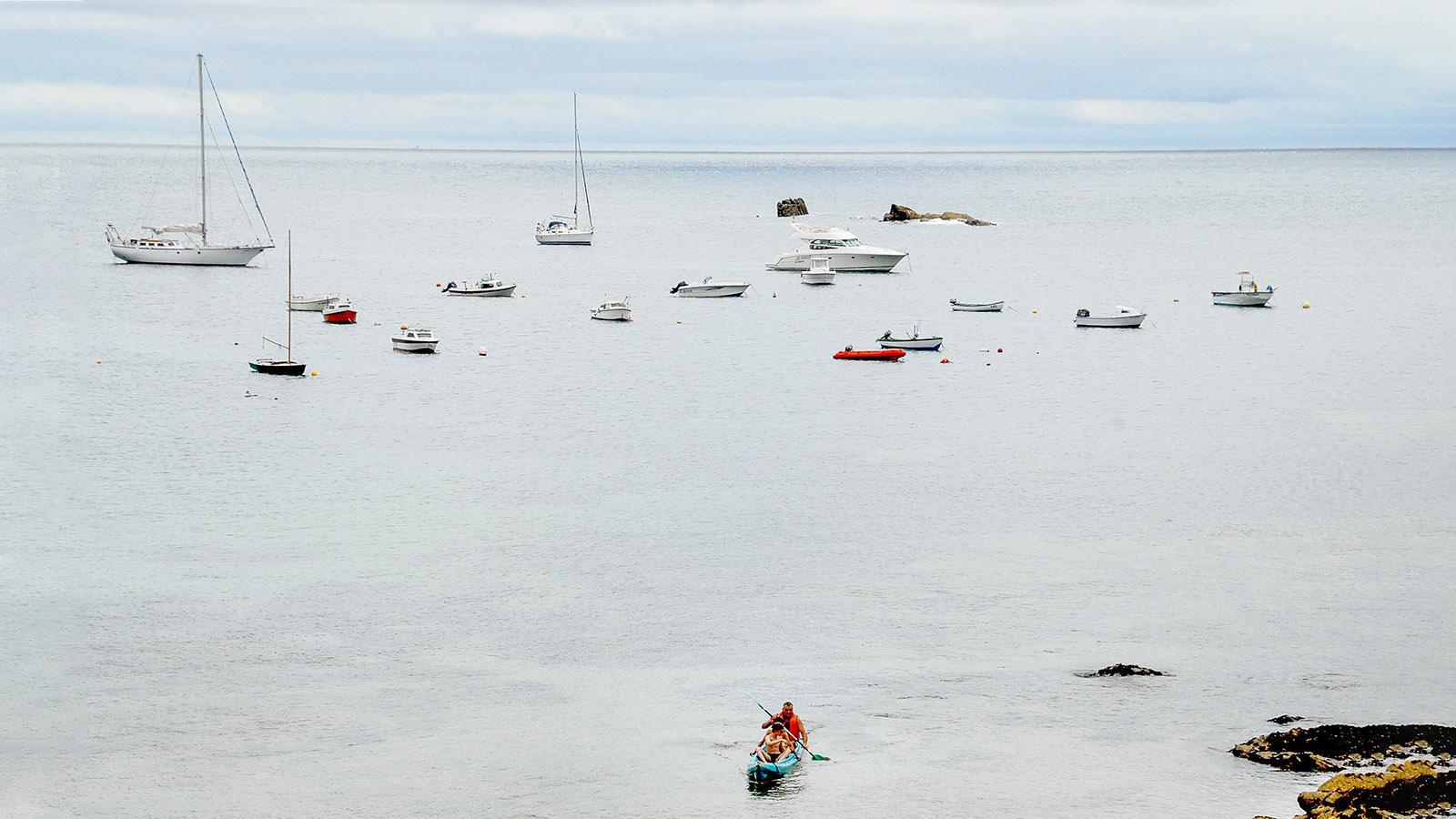 Île d'Yeu: an der Côte Sauvage. Foto: Hilke Maunder