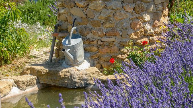 Lavendel in der Drôme