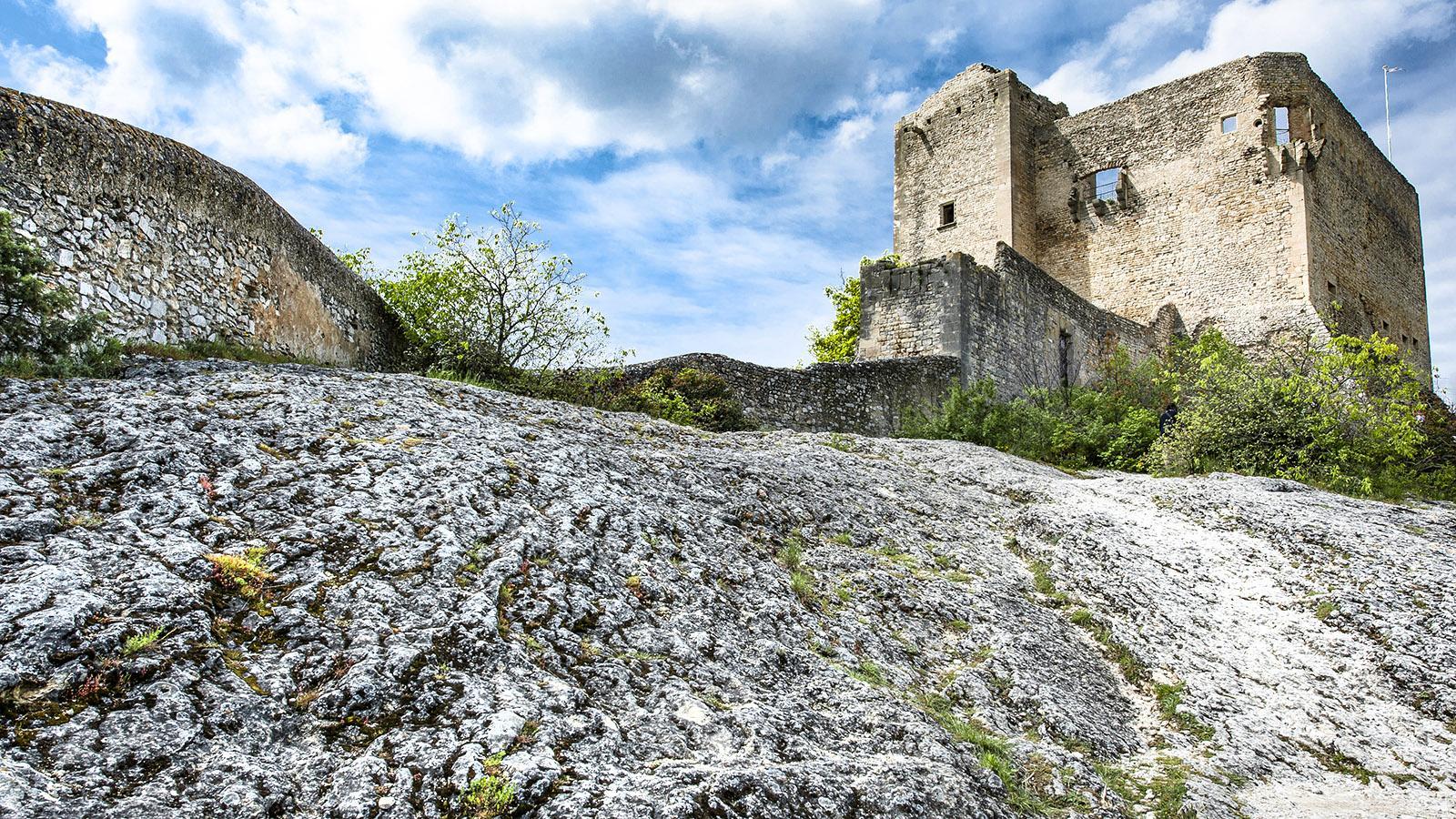 Die Burgruine der Bourg von Vaison-la-Romaine. Foto: Hilke Maunder