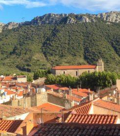 F-Pyrenees_StPauldeFenouilet_Gite_View