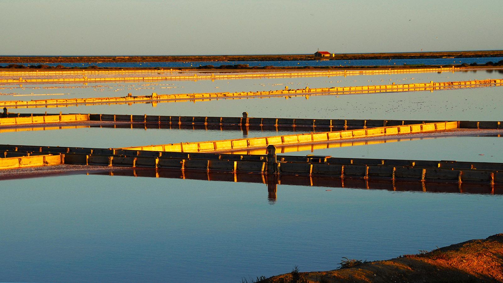 Zwischen Aigues-Morte und La Palme finden ihr an der Mittelmeerküste immer wieder Salinen, in denen wie einst das Salz handwerklich gewonnen wird. Foto: Hilke Maunder