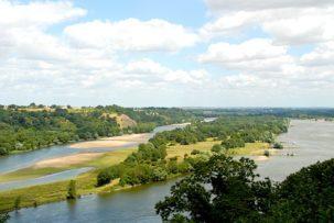 Maine-et-Loire/Champtoceaux: Loire-Panorama
