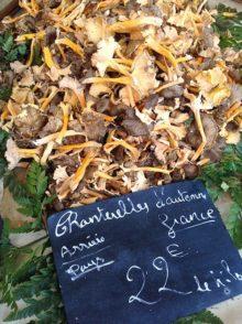 Provence_Nizza_Marché aux Fleurs_Pilze_5_©Hilke Maunder