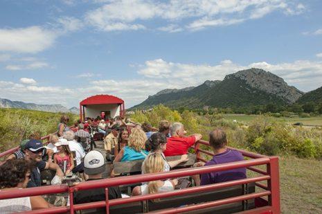 F_Pyrenees Orientales_StPaul_Train  Rouge_©Hilke Maunder