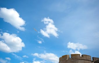 F_Bretagne_Saint Malo_Stadtmauer_Möwe_2_72_©Hilke Maunder